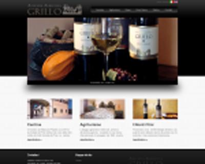 www.vinigrillo.it