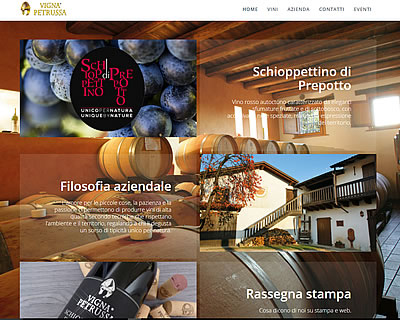 www.vignapetrussa.it/