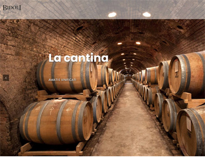 www.bidolivini.com